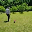 新緑の公園へ~