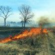 桜区役所近くの堤内、堤外地の野焼きが行われました