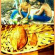 海と星の贈り物②「椰子の実」