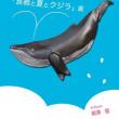 「食器と夏とクジラ」展:8月3日(木)~20日(日)