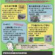夏休みキッズデー開催中 伊勢崎市赤堀民俗資料館にて