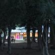 明日から代々木ケヤキ並木通りは ペルーとアフリカフェスティバル!