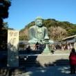 鎌倉長谷寺他に行ってきました