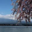 河口湖の春を探しに行こう!