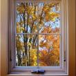 窓枠を作ってみました ジェートリムにて
