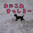 初めての雪道