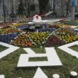 札幌 大通公園の春