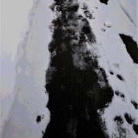 雪と暮らす