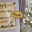 ソフトクリーム 販売日のお知らせ