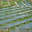 美しい 海苔養殖の川 (浜島町 迫子川)