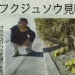 2018/03/17(土):桜 開花!?