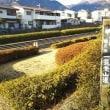 梅を探しに鶴見岳一気登山道から公園へ