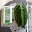 壽堂日記30年3月25日「抗がん剤治療と鍼灸治療・ビワの葉温灸。」