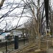 寒かったので、『熊谷守一の猫』眺めながら頼まれてた文章書きしてたら…