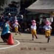 幼稚園・運動会(2017年10月08日)