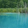 晩夏の青い池
