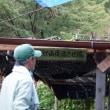 まつたけ山復活させ隊 NEWSLETTER 1348    マツタケ生産林家が忘れていること!! 松茸は「待つたけ」にあらず!