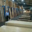✨🌱東海木材相互市場記念市🌱✨