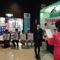 卒業おめでとう展開催中!