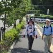 ② 龍王山登山 : 新しいアクセス道路