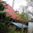 台風21号の被害