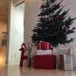 12月・クリスマス・忘年会・大晦日・プロフレッシュ・口臭・プロバイオティクス・