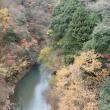 道志渓谷の自然:道志渓谷はまだ紅葉が残っていました。