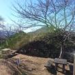 富士を見渡す伊豆峰・大嵐山(日守山)