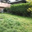 雨の前に草刈(^^;