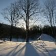 冬の使者が帰る季節