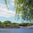 万博公園 (2)