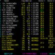 2007 F1 イギリスGP決勝