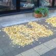 落ち葉でアート。いいですね。