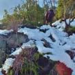 宮島の山に登る