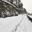 けっこう降りました。この地特有の湿気の多い、重い雪ですね。