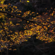 冬の光(清滝)