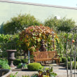 北海道「えこりん村・ガーデンセンター花の牧場」のルタバガ 2017年10月16日(月)