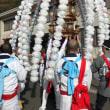11月12日は、日蓮宗大本山誕生寺お会式に参加