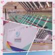 2017 INAS Swimming Championships
