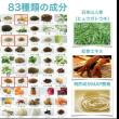 「腸・土壌・微生物」のトライアングル~感染症を克服する真の方法~