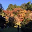 麻生大浦邸の紅葉