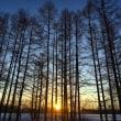 朝陽 1月14日  気温は今期最低?