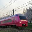 桜の季節のハマナス色いなほ(羽越E653系)