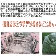 韓国での「日本人暴行事件」は「真理省のムジナ」に消された
