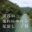 和のすすめ(71)渓谷の流れにゆれる足涼し:ke i ko ku no na ga re ni yu re ru a shi su zu shi