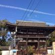 秋の京都で癒される