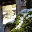 雪の中を箱根花の寺長安寺に行きました。