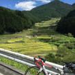 四谷千枚田へ