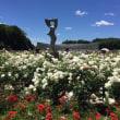神代植物公園と深大寺蕎麦