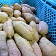 直売所出荷 農薬取締法・農薬安全使用基準の順守